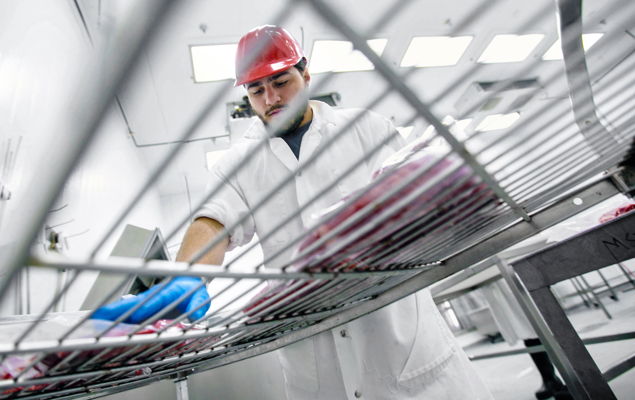Could Lab-Grown Meat Be the Next New Food?